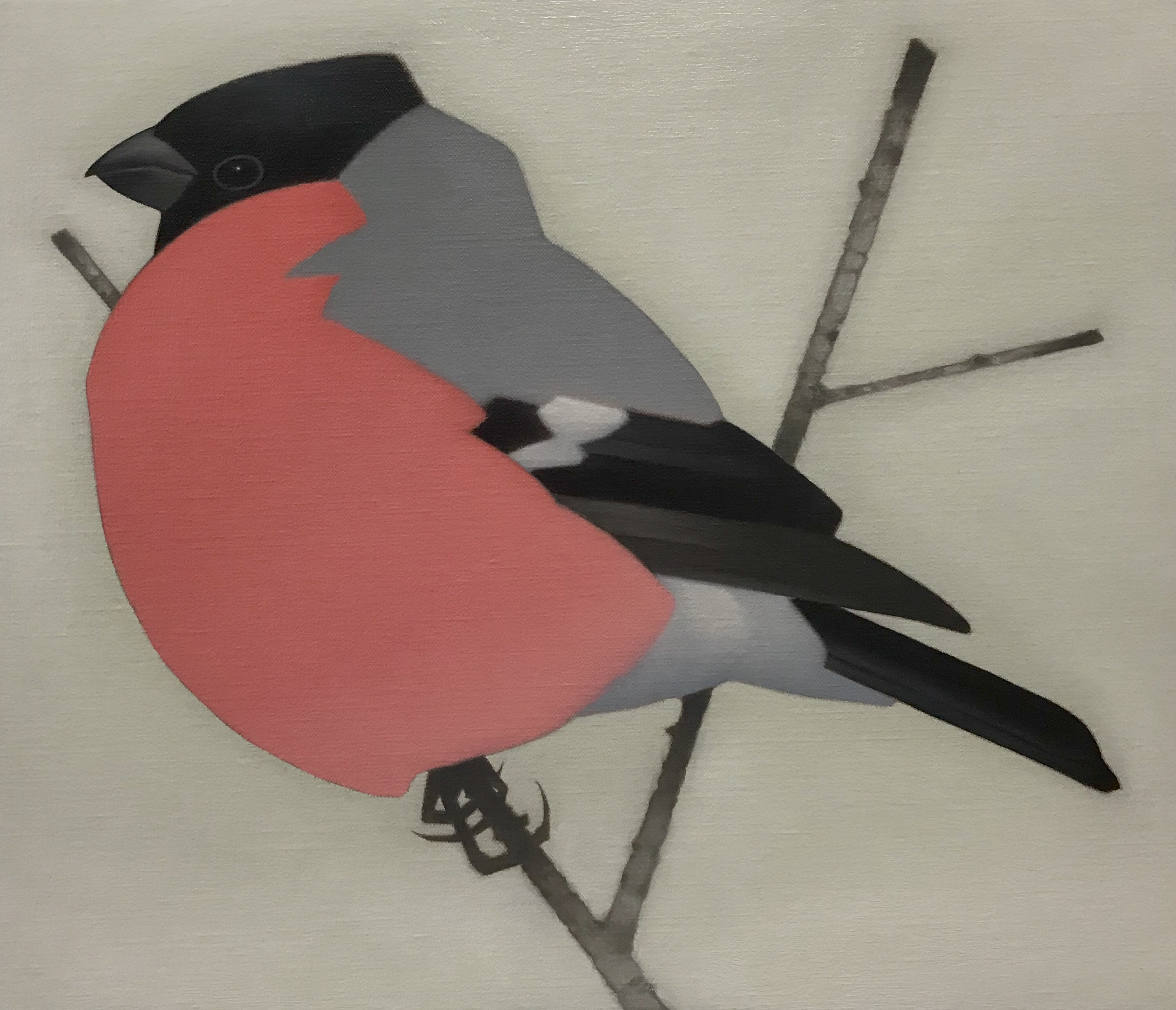 Painting of a Bullfinch