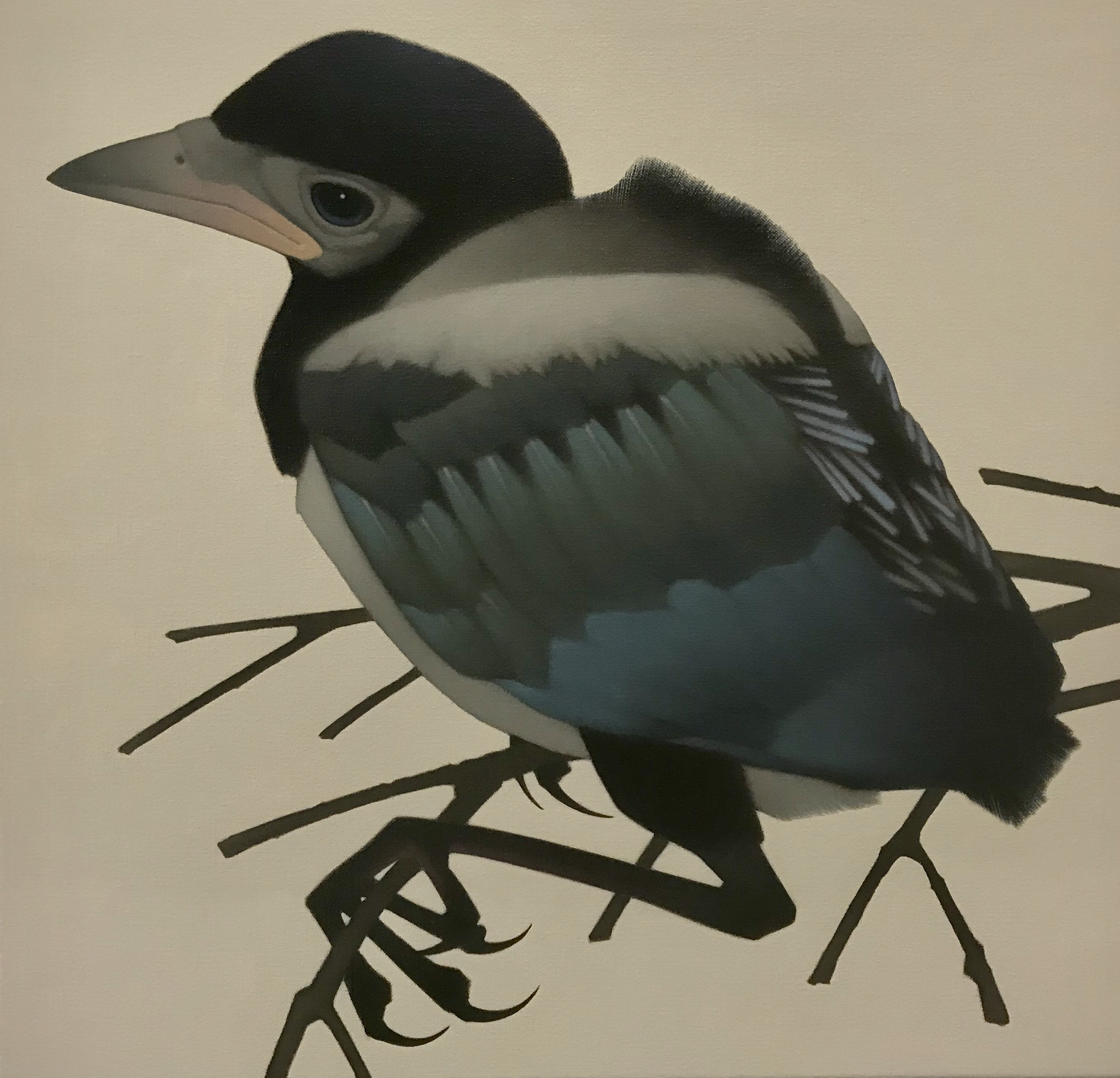 Painting of a Magpie Youngling