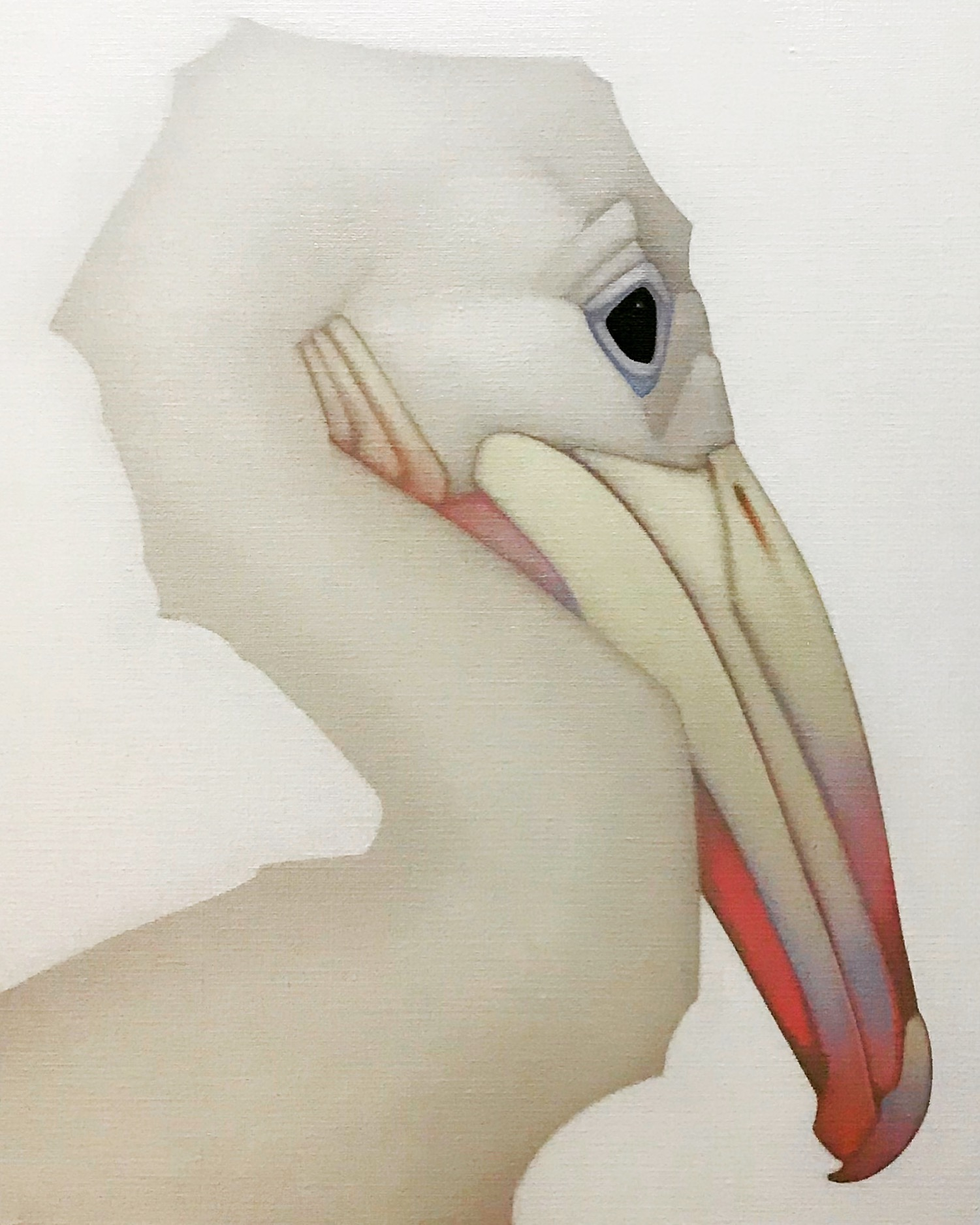 Pelican chick, 52_40cm oil on canvas 2019